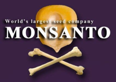 Monsanto Small