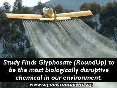Roundup Spraying