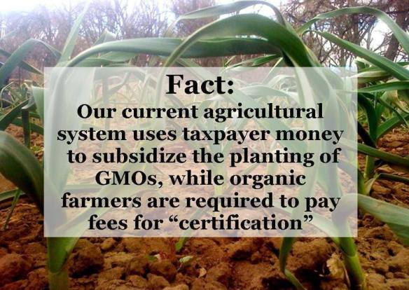 Big Agri subsidzed while Organic farmers certified