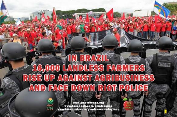 GMO Brazil Uprising