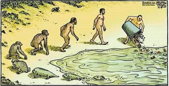 Circle of Life - Evolution