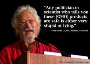 GMO-Any Politicians Tells you safe