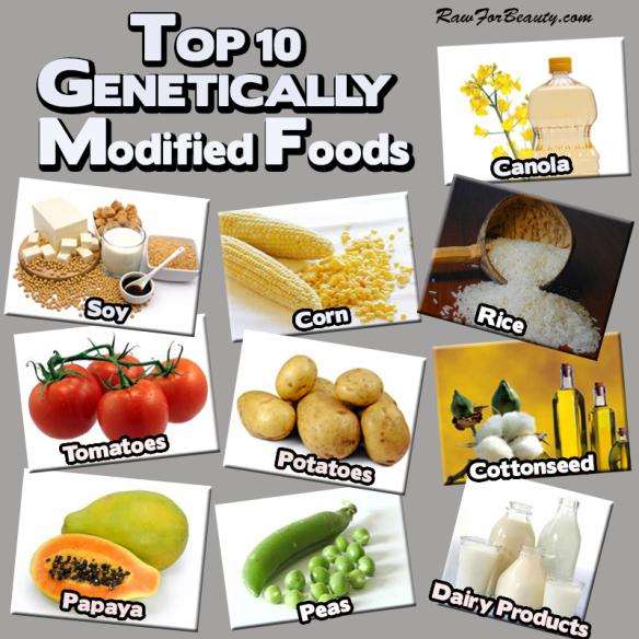 Top 10 GMOs